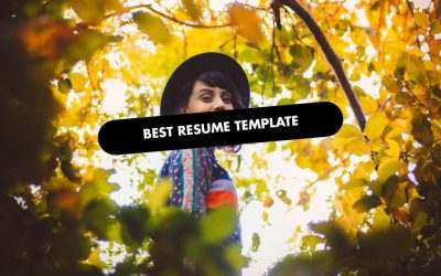 The 20 Best Resume Website Templates of 2020