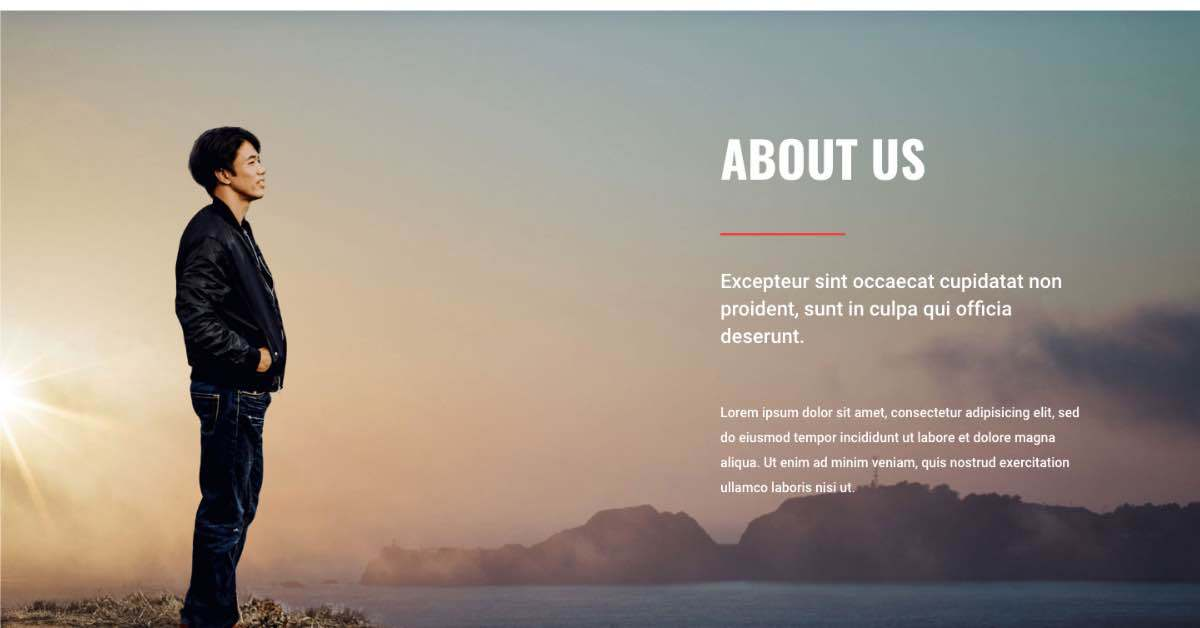 Travel Agency about us template