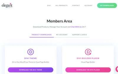 How to Buy The Divi Theme in 2021?