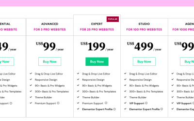 Elementor Pricing 2021: 5 Hacks to Get The Lowest Price
